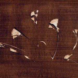 dessin bg fleurs OSER LA ROSE