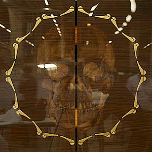 Peinture de crâne et papillons à la feuille d'or : MEMENTO MORI réalisé par Guillevic